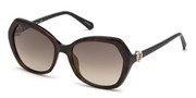खरीदें अथवा मॉडल Swarovski Eyewear के चित्र को बड़ा कर देखें SK0165-52F.